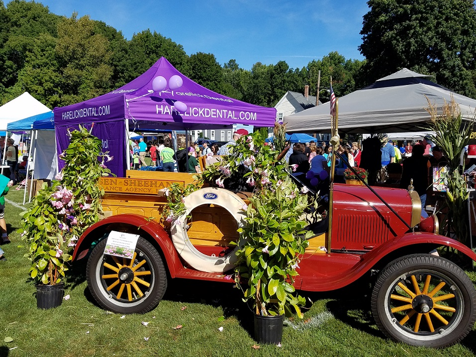 Antique cars with plants and flowers